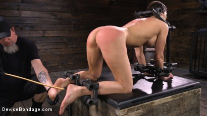 Photo number 13 from Ariel X: Body Builder Double Penetrated in Diabolical Devices shot for Device Bondage on Kink.com. Featuring Ariel X in hardcore BDSM & Fetish porn.