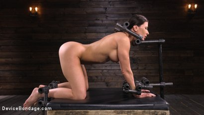 Photo number 7 from Ariel X: Body Builder Double Penetrated in Diabolical Devices shot for Device Bondage on Kink.com. Featuring Ariel X in hardcore BDSM & Fetish porn.