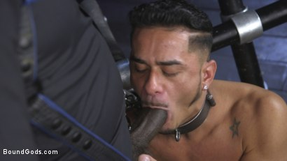 Photo number 7 from Cesar Xes is Ace Rockwood's Perfect Little Bitch Boy shot for Bound Gods on Kink.com. Featuring Ace Rockwood and Cesar Xes in hardcore BDSM & Fetish porn.