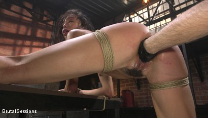 Photo number 15 from Alexis Tae: Fuck-Hungry Slut Fisted For The First Time shot for Brutal Sessions on Kink.com. Featuring Tommy Pistol and Alexis Tae in hardcore BDSM & Fetish porn.