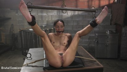 Photo number 19 from Alexis Tae: Fuck-Hungry Slut Fisted For The First Time shot for Brutal Sessions on Kink.com. Featuring Tommy Pistol and Alexis Tae in hardcore BDSM & Fetish porn.