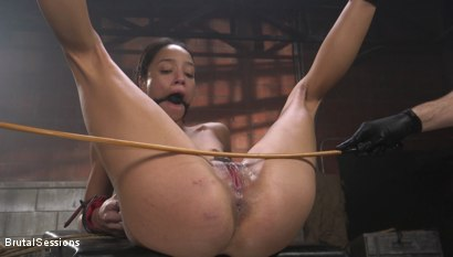 Photo number 20 from Alexis Tae: Fuck-Hungry Slut Fisted For The First Time shot for Brutal Sessions on Kink.com. Featuring Tommy Pistol and Alexis Tae in hardcore BDSM & Fetish porn.