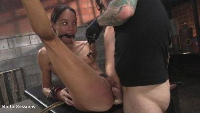 Photo number 21 from Alexis Tae: Fuck-Hungry Slut Fisted For The First Time shot for Brutal Sessions on Kink.com. Featuring Tommy Pistol and Alexis Tae in hardcore BDSM & Fetish porn.