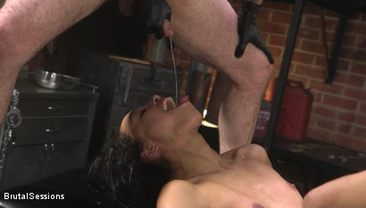 Photo number 28 from Alexis Tae: Fuck-Hungry Slut Fisted For The First Time shot for Brutal Sessions on Kink.com. Featuring Tommy Pistol and Alexis Tae in hardcore BDSM & Fetish porn.