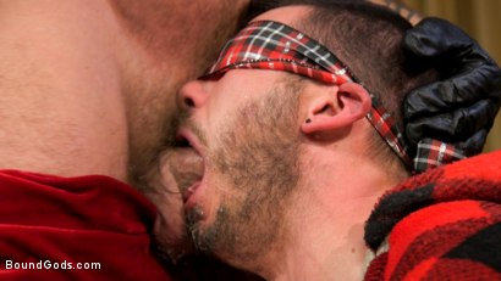 Photo number 15 from Homo Alone, Part One: Vander Pulaski Taken Down in Home Invasion shot for Bound Gods on Kink.com. Featuring Dirk Caber, Jack Dyer and Vander Pulaski in hardcore BDSM & Fetish porn.