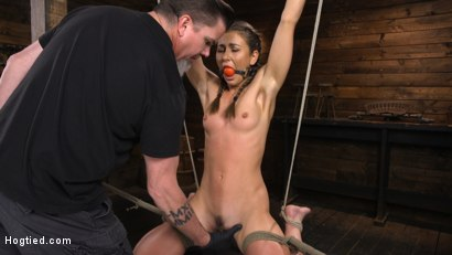 Photo number 3 from Paige Owens: Hot, Young, and Willing to Suffer in Bondage shot for Hogtied on Kink.com. Featuring Paige Owens in hardcore BDSM & Fetish porn.