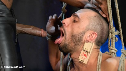Photo number 12 from Rat in a Cage: Chance Summerlin Serves Leather Muscle God Max Konnor shot for Bound Gods on Kink.com. Featuring Max Konnor and Chance Summerlin in hardcore BDSM & Fetish porn.