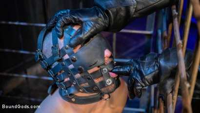 Photo number 2 from Rat in a Cage: Chance Summerlin Serves Leather Muscle God Max Konnor shot for Bound Gods on Kink.com. Featuring Max Konnor and Chance Summerlin in hardcore BDSM & Fetish porn.