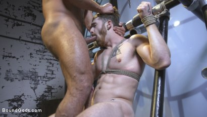Photo number 15 from Cheating Slut: Nick Milani Submits to Sharok and His Hard Cock shot for Bound Gods on Kink.com. Featuring Sharok and Nick Milani in hardcore BDSM & Fetish porn.