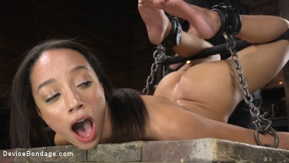Photo number 12 from Alexis Tae: Exploring The Dark Side of Porn shot for Device Bondage on Kink.com. Featuring Alexis Tae in hardcore BDSM & Fetish porn.