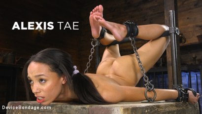 Photo number 18 from Alexis Tae: Exploring The Dark Side of Porn shot for Device Bondage on Kink.com. Featuring Alexis Tae in hardcore BDSM & Fetish porn.