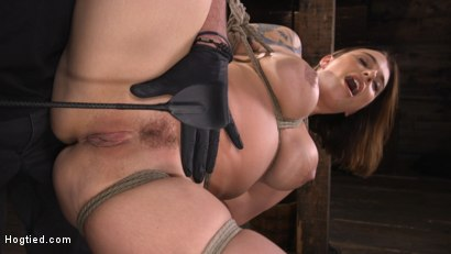 Photo number 8 from Ivy LeBelle: Curvy Slut in Bondage Tormented and Made to Cum shot for Hogtied on Kink.com. Featuring Ivy LeBelle in hardcore BDSM & Fetish porn.