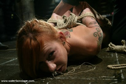 Photo number 10 from Scarlett Pain is Introduced to Waterbondage! shot for Water Bondage on Kink.com. Featuring Scarlett Pain in hardcore BDSM & Fetish porn.
