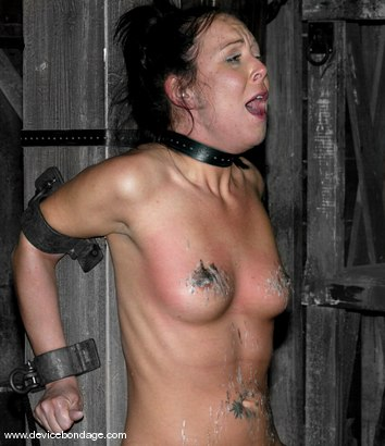 Photo number 12 from Primal shot for Device Bondage on Kink.com. Featuring Julie Night in hardcore BDSM & Fetish porn.