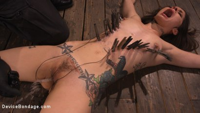 Photo number 14 from Vanessa Vega: Fresh Meat Lays It All On The Line shot for Device Bondage on Kink.com. Featuring Vanessa Vega in hardcore BDSM & Fetish porn.