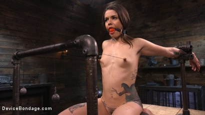 Photo number 2 from Vanessa Vega: Fresh Meat Lays It All On The Line shot for Device Bondage on Kink.com. Featuring Vanessa Vega in hardcore BDSM & Fetish porn.