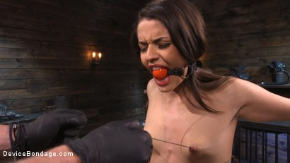 Photo number 4 from Vanessa Vega: Fresh Meat Lays It All On The Line shot for Device Bondage on Kink.com. Featuring Vanessa Vega in hardcore BDSM & Fetish porn.