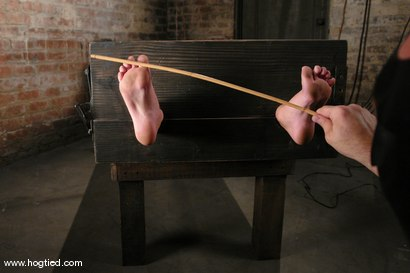 Photo number 5 from Holly Wellin, has the most amazing hard orgasms <br> come out of her shot for Hogtied on Kink.com. Featuring Holly Wellin in hardcore BDSM & Fetish porn.