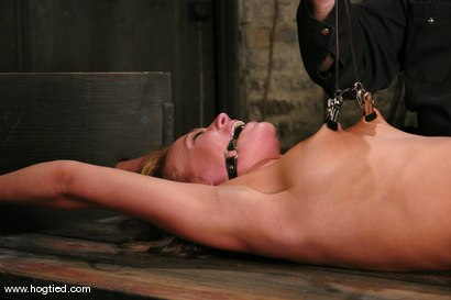 Photo number 6 from Holly Wellin, has the most amazing hard orgasms <br> come out of her shot for Hogtied on Kink.com. Featuring Holly Wellin in hardcore BDSM & Fetish porn.