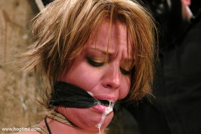 Photo number 8 from Holly Wellin, has the most amazing hard orgasms <br> come out of her shot for Hogtied on Kink.com. Featuring Holly Wellin in hardcore BDSM & Fetish porn.