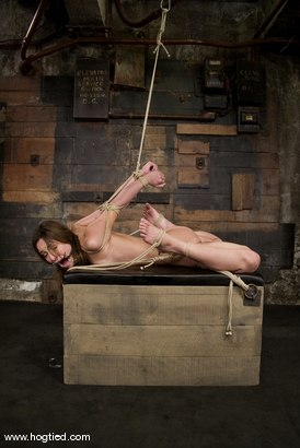 Photo number 14 from Amber is Bound and Face Fucked shot for Hogtied on Kink.com. Featuring Amber Rayne in hardcore BDSM & Fetish porn.