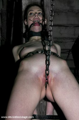 Photo number 14 from Sarge in Charge shot for Device Bondage on Kink.com. Featuring Kristine in hardcore BDSM & Fetish porn.