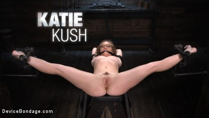 Katie Kush: The Brat is Back