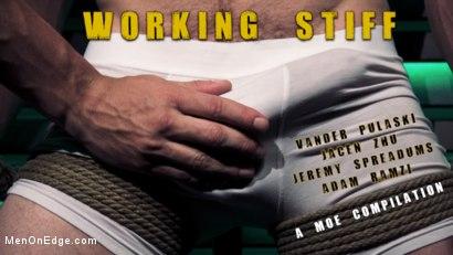 Working Stiff! A kinky MOE Compilation