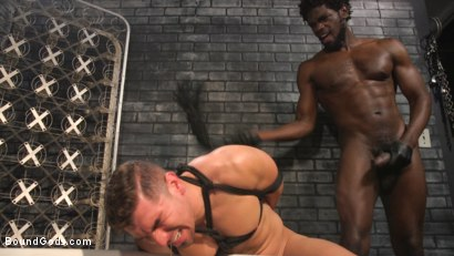 Photo number 13 from Well Hung Fuck Toys: Giant Dicks Dominate Tight Holes shot for Bound Gods on Kink.com. Featuring Colby Jansen, Casey Everett, Devin Trez, Jeremy Spreadums, Ace Rockwood, Seamus O'Reilly, Pierce Paris, Vander Pulaski, Michael DelRay and Nic Sahara in hardcore BDSM & Fetish porn.