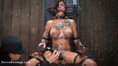 Photo number 6 from FLOOD: Submissive Women Bound in Metal and Made to Squirt shot for Device Bondage on Kink.com. Featuring Bonnie Rotten, Daisy Ducati, Roxanne Rae, Janice Griffith, Lilly Lit and Ashley Lane in hardcore BDSM & Fetish porn.