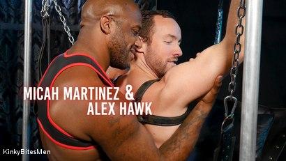 Daddy's Home: Alex Hawk & Micah Martinez Fuck RAW