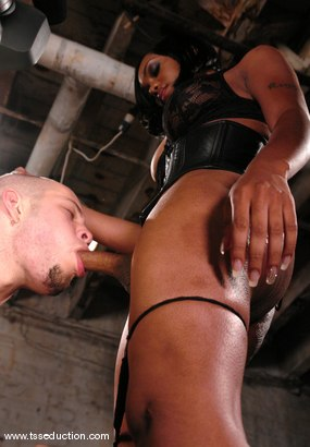 Photo number 7 from Sexy Jade and Wolf Hudson shot for TS Seduction on Kink.com. Featuring Sexy Jade and Wolf Hudson in hardcore BDSM & Fetish porn.