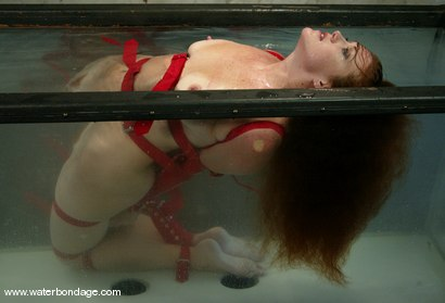 Photo number 13 from Sabrina Fox IS a fox!! shot for Water Bondage on Kink.com. Featuring Sabrina Fox in hardcore BDSM & Fetish porn.