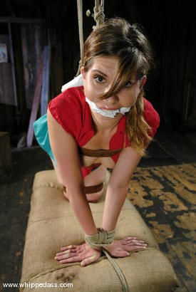 Photo number 14 from Bonus shot for Whipped Ass on Kink.com. Featuring Roma and Claire Adams in hardcore BDSM & Fetish porn.