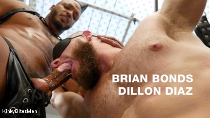 Dillon Diaz and Brian Bonds: Right Where I Want You