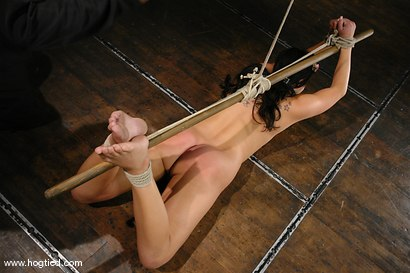 Photo number 5 from Bianca Dagger suffers and cums though her first hardcore bondage experience. shot for Hogtied on Kink.com. Featuring Bianca Dagger in hardcore BDSM & Fetish porn.