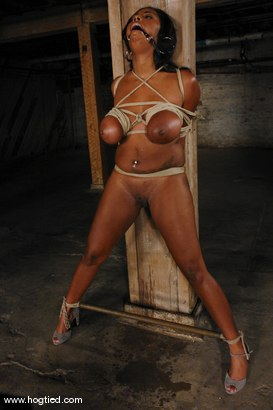 Photo number 3 from Candace Von and her huge natural booming tits. shot for hogtied on Kink.com. Featuring Candace Von in hardcore BDSM & Fetish porn.