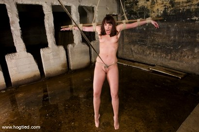 Photo number 4 from Dana DeArmond, is still one of toughest bondage models of our lifetimes. shot for Hogtied on Kink.com. Featuring Dana DeArmond in hardcore BDSM & Fetish porn.