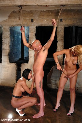 Photo number 9 from Diezel, Jessica Host and Sexy Jade shot for TS Seduction on Kink.com. Featuring Jessica Host, Sexy Jade and Diezel in hardcore BDSM & Fetish porn.