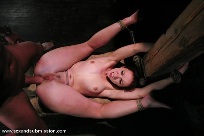 Photo number 12 from Trinity is amazing in first time boy/girl bondage sex. shot for Sex And Submission on Kink.com. Featuring Mark Davis and Trinity Post in hardcore BDSM & Fetish porn.