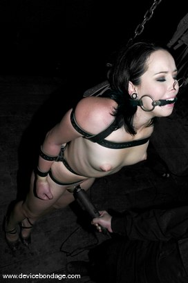Photo number 11 from Cramped shot for Device Bondage on Kink.com. Featuring Alexa Von Tess in hardcore BDSM & Fetish porn.