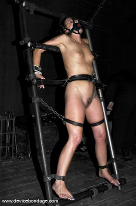 Photo number 14 from Cramped shot for Device Bondage on Kink.com. Featuring Alexa Von Tess in hardcore BDSM & Fetish porn.