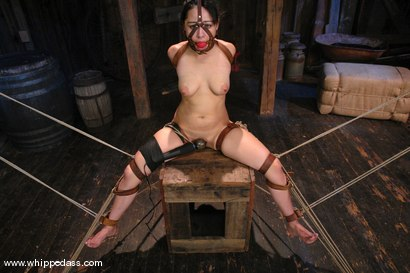 Photo number 12 from LeiLani shot for Whipped Ass on Kink.com. Featuring Nikki Nievez and LieLani in hardcore BDSM & Fetish porn.