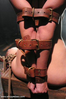 Photo number 13 from LeiLani shot for Whipped Ass on Kink.com. Featuring Nikki Nievez and LieLani in hardcore BDSM & Fetish porn.