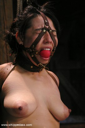 Photo number 14 from LeiLani shot for Whipped Ass on Kink.com. Featuring Nikki Nievez and LieLani in hardcore BDSM & Fetish porn.