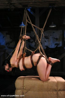 Photo number 5 from LeiLani shot for Whipped Ass on Kink.com. Featuring Nikki Nievez and LieLani in hardcore BDSM & Fetish porn.