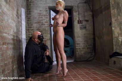 Photo number 3 from The Ultimate MILF! <br>Kylie Worthy is back with her HUGE nipples, and beautiful face.<br> shot for Hogtied on Kink.com. Featuring Kylie Worthy in hardcore BDSM & Fetish porn.