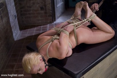 Photo number 5 from The Ultimate MILF! <br>Kylie Worthy is back with her HUGE nipples, and beautiful face.<br> shot for Hogtied on Kink.com. Featuring Kylie Worthy in hardcore BDSM & Fetish porn.