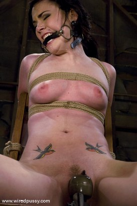Photo number 11 from Andy San Dimas shot for Wired Pussy on Kink.com. Featuring Andy San Dimas in hardcore BDSM & Fetish porn.