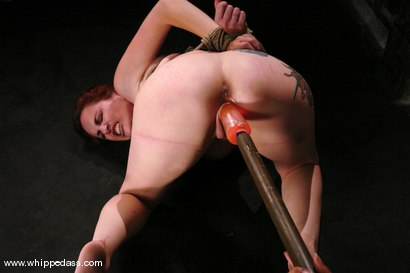 Photo number 13 from Berlin Submits shot for Whipped Ass on Kink.com. Featuring Mz Berlin and Isis Love in hardcore BDSM & Fetish porn.